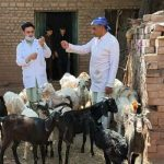 Livestock Mobile Field Day